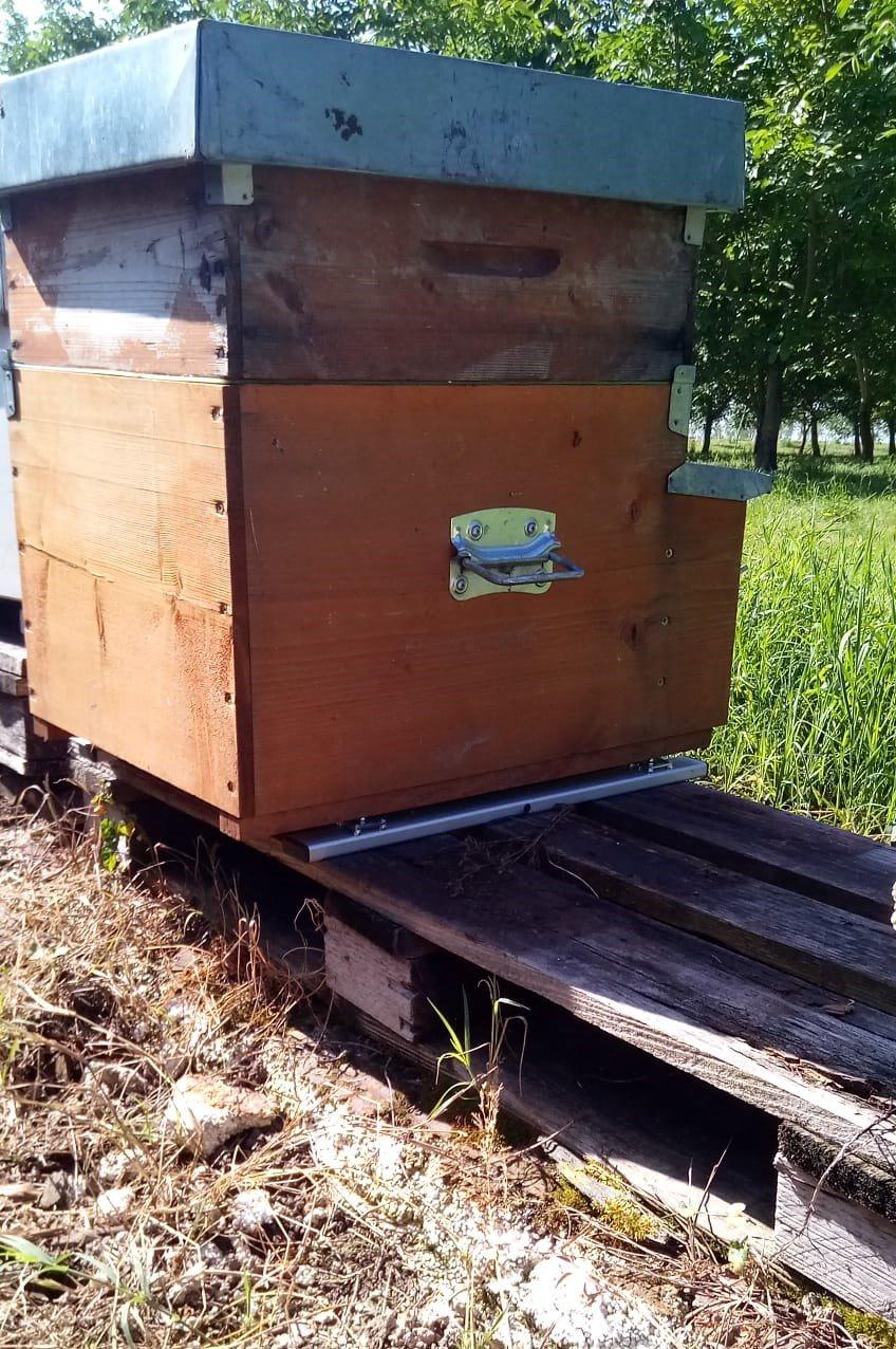 bilancia tecnologica sotto cassetta o arnia di api